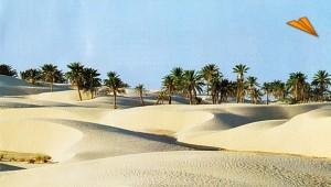 253_1_tunez_el_gran_sur[1]